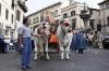 processione_ss_salvatore_13