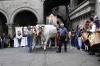 processione_ss_salvatore_34