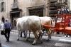 processione_ss_salvatore_9