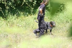 <p> Gradoli - Con i cani per cercare le donne scomparse</p>
