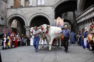 <p>Processione del Santissimo Salvatore</p>